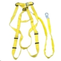 Rental store for HARNESS   LANYARD in Fort Collins CO